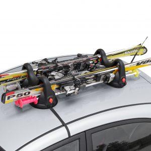 magnetic ski carrier made with polymer